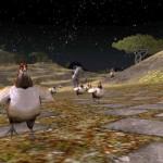 chicken-run-08