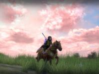 Pink pony patrol