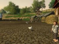 Grand Shire Chicken Run 2013